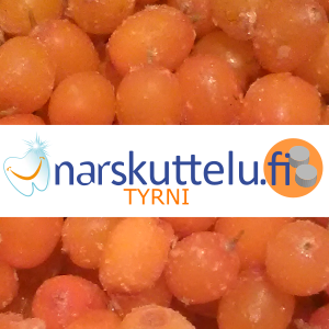 Sea Buckthorn Berry Xylitol Pastilles, 100 g to 10 kg.