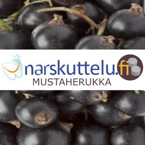Blackcurrant Xylitol Pastilles, 100 g to 10 kg.